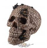 Skull  honeycomb design Koponya méhsejt kialakítással .766-7498. koponya figura