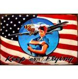 KEEP 'em  FLYING.  20X30.cm. fém tábla kép
