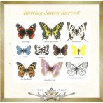 BARCLAY JAMES HARVEST - THE COLLECTION. zenei cd
