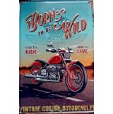 BORN TO BE WILD -  Metal Sign.  20X30.cm. fém tábla kép