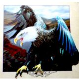 EAGLE - 3D. 42.cm. nagy méretű 3D fali kép.