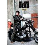 THE WALKING DEAD - DARYL. plakát, poszter, tábla kép. 28 X 40. cm