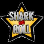ACTION - Chaos brigád. piros logo. hímzett felvarró