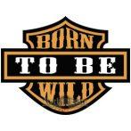 BORN TO BE WILD. hátfelvarró