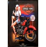 BIKER - MOTOR SPEED KING COMPANY.  20X30.cm. fém tábla kép