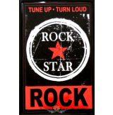 ROCK STAR.  20X30.cm. fém tábla kép