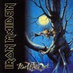 Iron Maiden - Fear of the dark.   SFL. felvarró