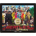 3D. The Beatles - Sgt. Peppers 3d.  3 dimenzios keretezett kép