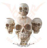 3 skulls candle holder.  6155.  gyertya tartó