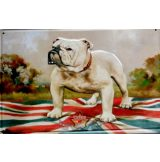 ENGLISH BULLDOG -  Metal Sign.  20X30.cm. fém tábla kép