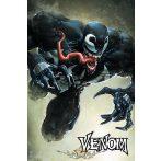 Venom (Leap).  plakát, poszter