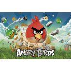 ANGRY BIRDS  plakát, poszter